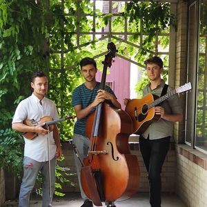 The Freewheel Trio