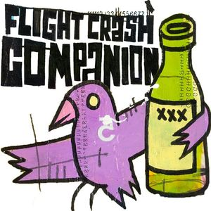 Flight Crash Companion