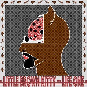Little Brown Kitty