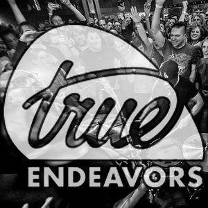 True Endeavors LLC