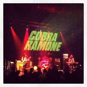 Cobra Ramone Music