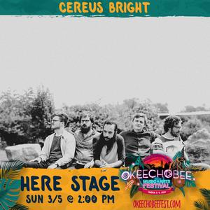 Cereus Bright