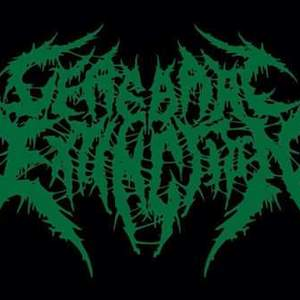 Cerebral Extinction