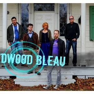 Wildwood Bleau
