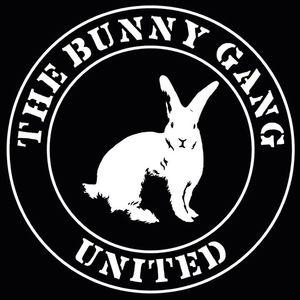 The Bunny Gang