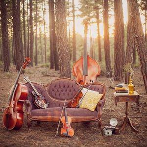 Arizona Folk Ensemble