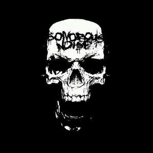 Sonorous Noise (Official)