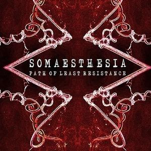 Somaesthesia
