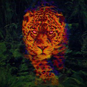 Junglelyd