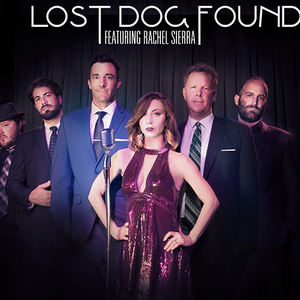 LOST DOG FOUND