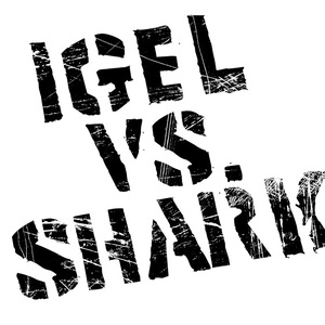Igel vs. Shark