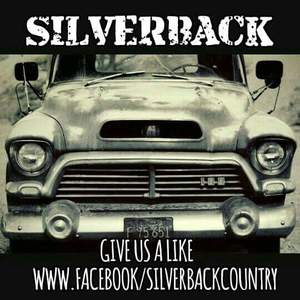 Silver Back