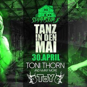Toni Thorn