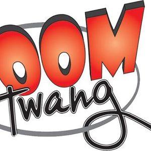 Boom Twang Band