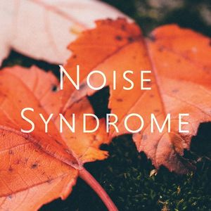 Noise Syndrome