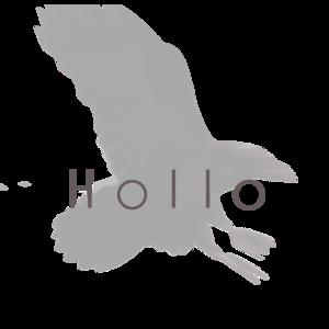 Hollo