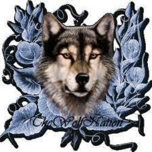 Wolf Nation