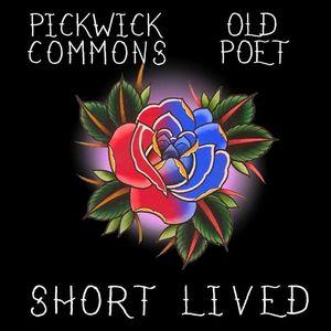 Pickwick Commons