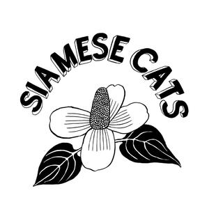 シャムキャッツ SIAMESE CATS