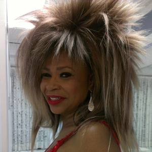Tina Turner Impersonator and Singer