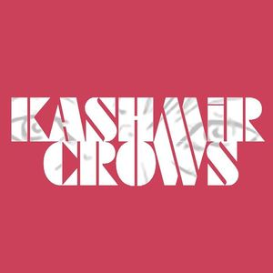 Kashmir Crows
