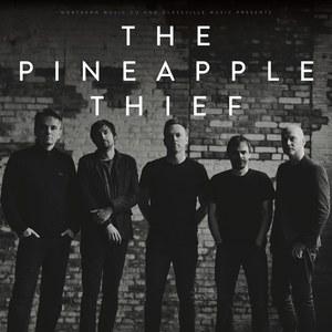 Pineapple Thief