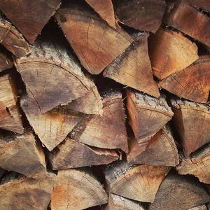 Hudson Woodpile