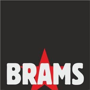 BRAMS 2010