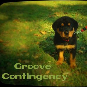 Groove Contingency