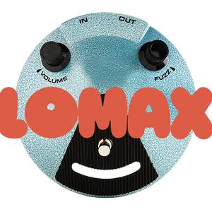 LOMAX il complesso musicale