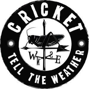 Cricket Tell the Weather