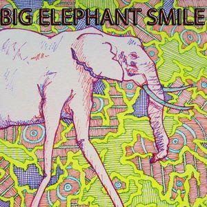 Big Elephant Smile