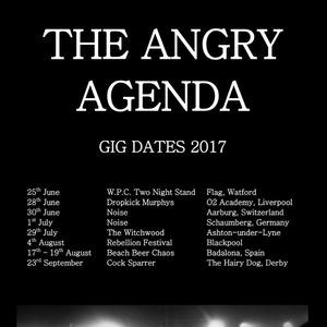 The Angry Agenda