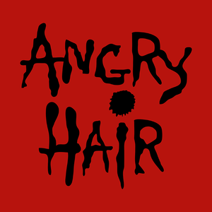 Angry Hair (Alice In Chains cover band)