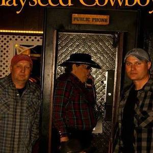 Hayseed Cowboys
