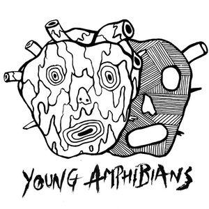Young Amphibians