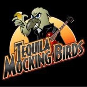 Tequila Mocking Birds