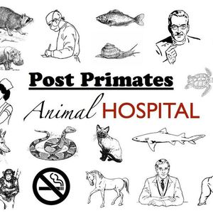 Post Primates