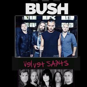 Velvet Saints
