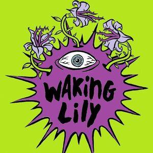 Waking Lily