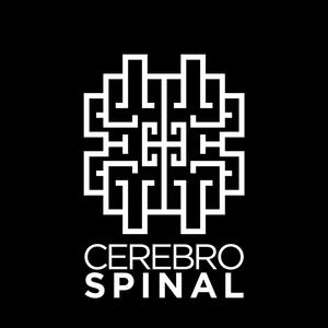 Cerebro Spinal