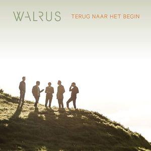 Walrus (BEL)