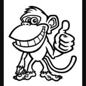 Wind up monkey band nj
