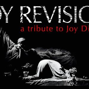 Joy Revision