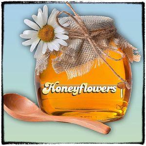 Honeyflowers