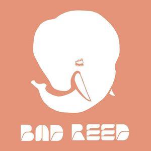Bad Reed
