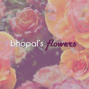 Bhopal's Flowers