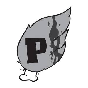 Pigeonwing