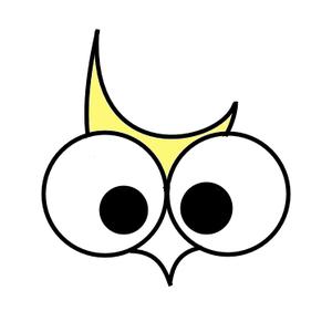 The Moon Owls