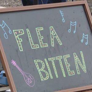 Flea Bitten